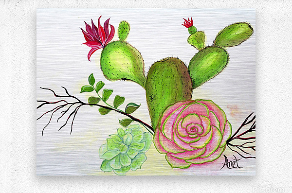 Flowering Cactus   Metal print