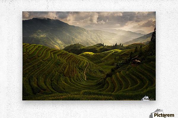 A Tuscan Feel in China  Metal print