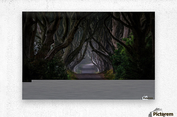Magic road  Metal print