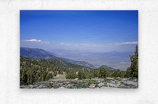 Out West 1 of 8  Metal print