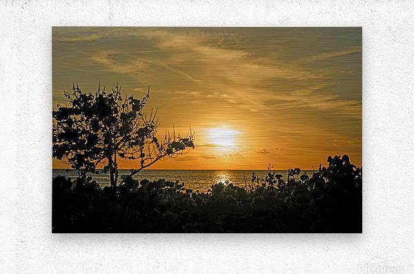 Delicate - Sunset Hawaiian Islands  Metal print