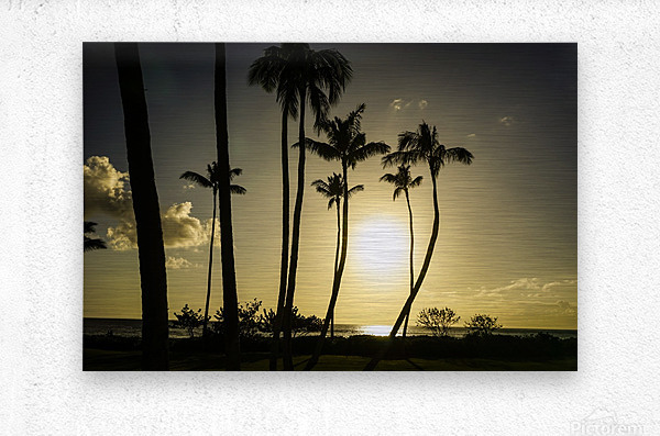 Clear Day  Metal print