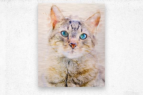 Dragon Li Hau cat  Metal print