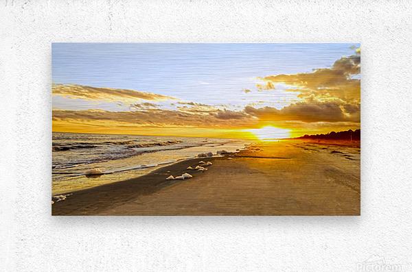The Summer Sun Sets in the Carolinas  Metal print