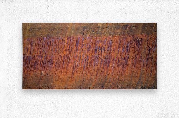Rust ap 2510  Metal print