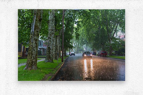 Summer Rain ap 2892  Metal print
