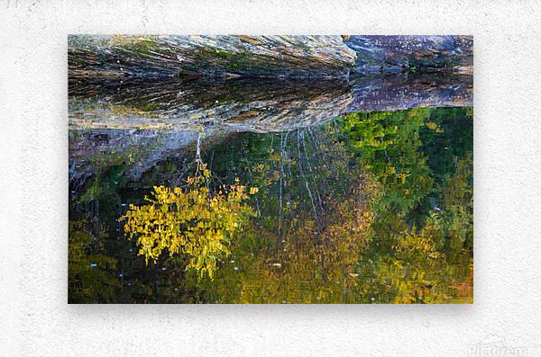 Reflection ap 2529  Metal print