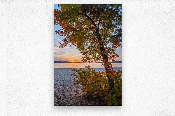 Sunset ap 2574  Metal print
