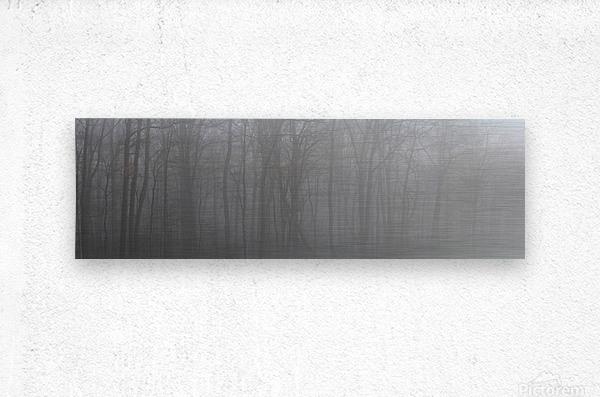 Treeline apmi 1546  Metal print