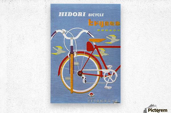 Bicycle Hidori  Metal print
