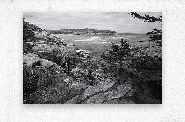 Acadia ap 2376 B&W  Metal print