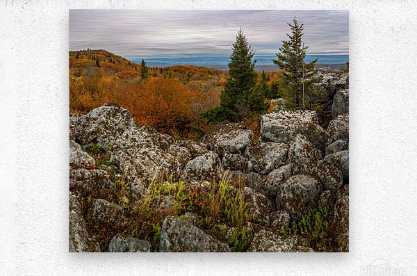 Bear Rocks Overlook apmi 1789  Metal print