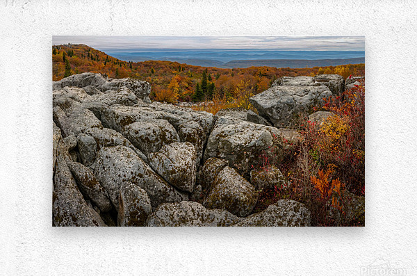 Bear Rocks Overlook apmi 1793  Metal print