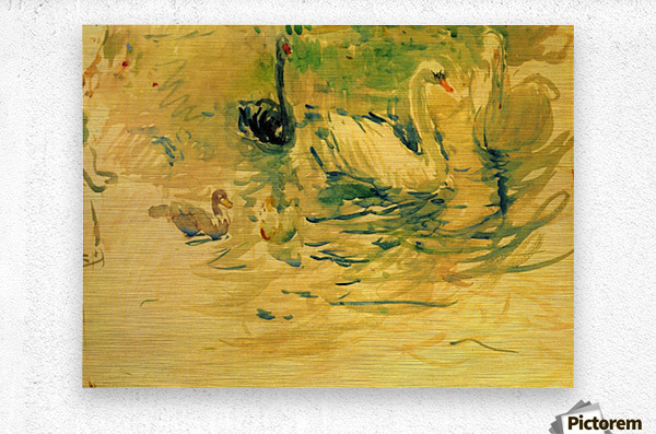 Swans by Morisot  Metal print