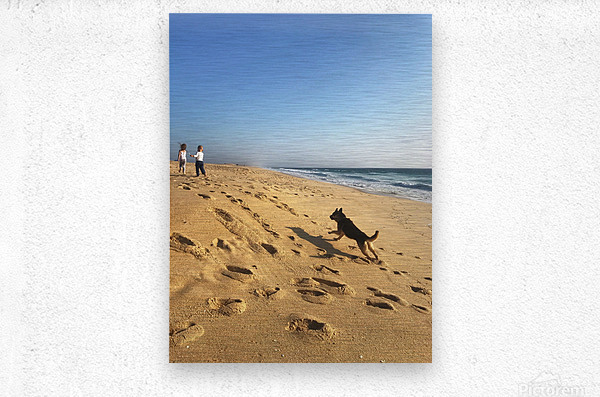 Dog and kids on the beach in Portugal  Metal print