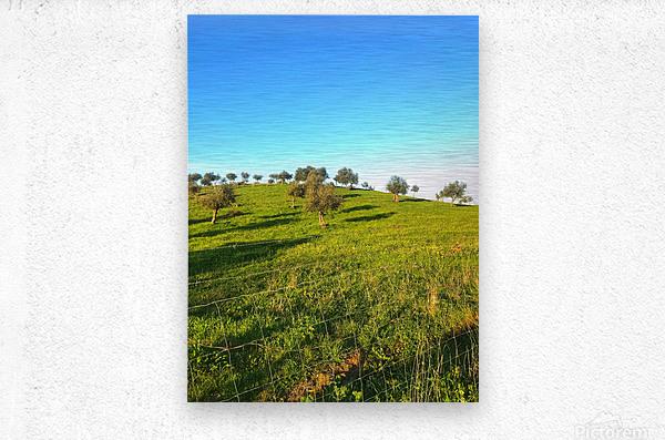 Landscape of central Portuga  Metal print