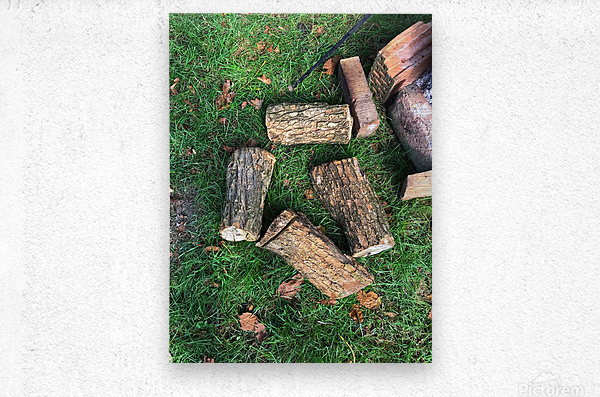 wood for fire  Metal print