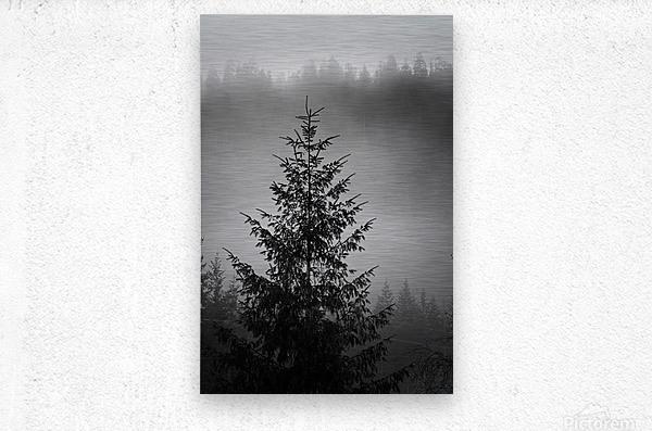 Lonliest Tree  Metal print