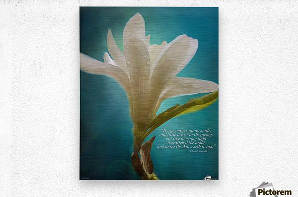 Like Morning Light - Flower Art by Jordan Blackstone  Metal print