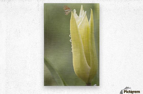 Spirit Of Love - Spring Art by Jordan Blackstone  Metal print