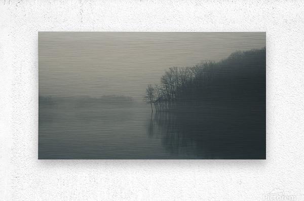 Fog and Peace  Metal print