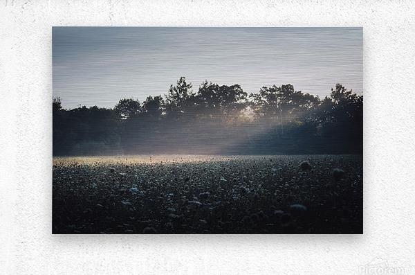 Pennsylvania Sunrise  Metal print