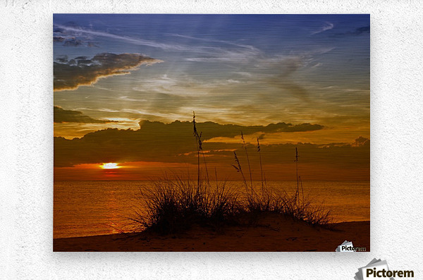 Gorgeous Sunset  Metal print