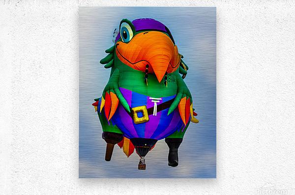 Pirate Parrot Adventures  Metal print