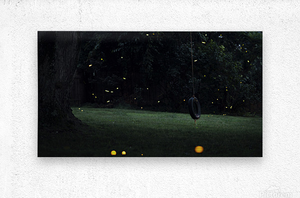 Fireflies in Pennsylvania  Metal print