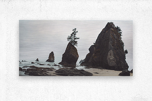Shi Shi Beach  Metal print