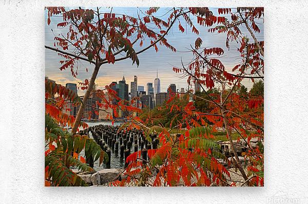 Autumn in New York   Metal print