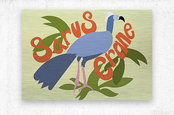 The Sarus Crane  Metal print