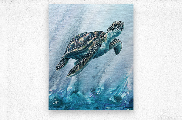 Watercolor Giant Turtle In Abstract Seaweed And Water XI  Metal print