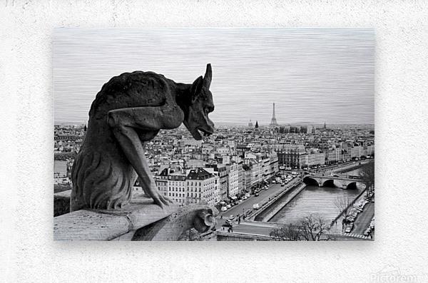 Notre Dame gargoyle  Impression metal