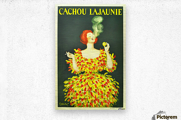 Cachou Lajaunie  Metal print