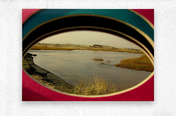 Eyeing the Cape  Metal print