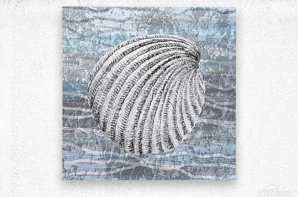Silver Gray Seashell On Ocean Shore Waves And Rocks II  Metal print