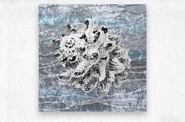Silver Gray Seashell On Ocean Shore Waves And Rocks VI  Metal print