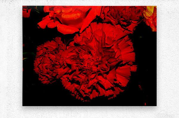 sofn ED31563A  Metal print