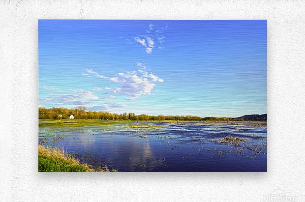 Beautiful Day at the Estuary  Metal print