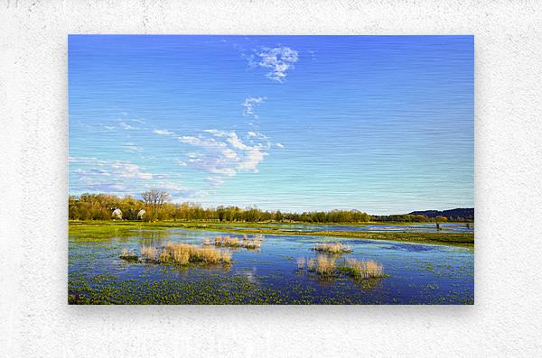 Beautiful Day at the Estuary 2  Metal print