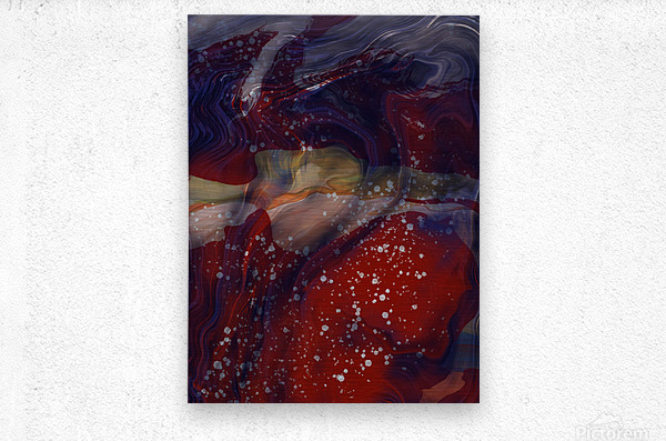 The Universe is Conscious   Metal print
