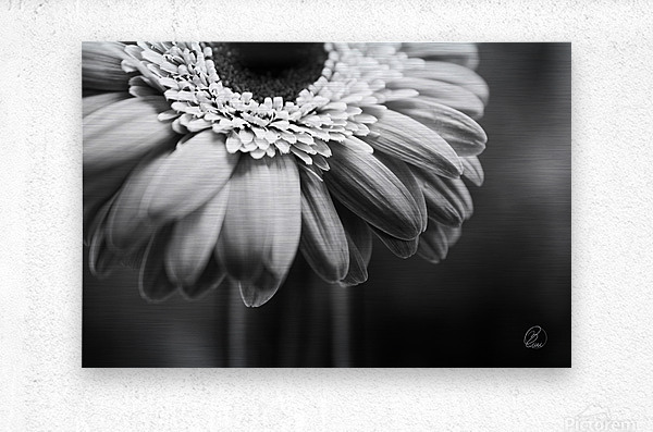 Ill Be There  Metal print