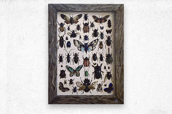 Beetles  Metal print