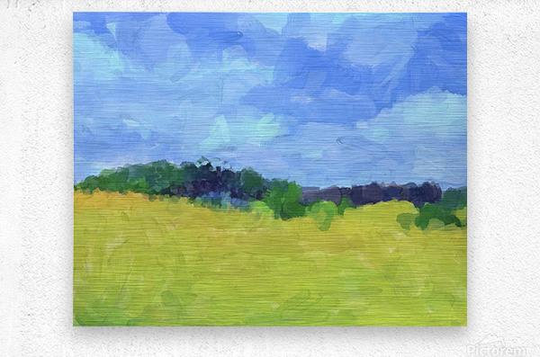 Parkton Landscape in Spring Green  Metal print
