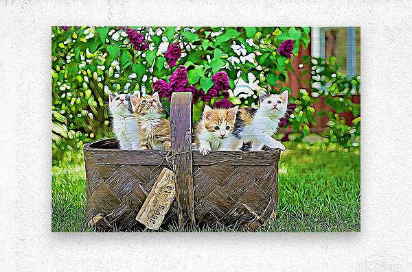 Basket of Kittens  Metal print
