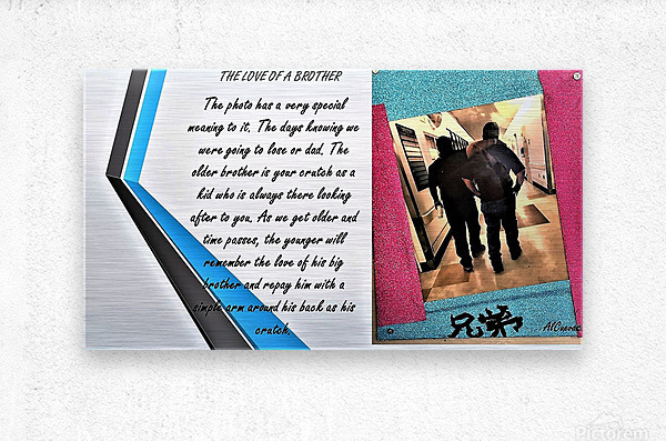 21.THE LOVE OF A BROTHER  3   Metal print