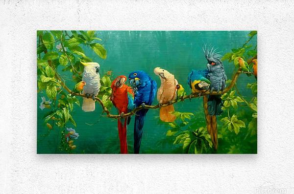 Birds Of Paradise   Metal print