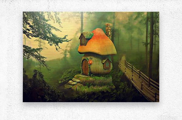 Mushroom Cottage  Metal print