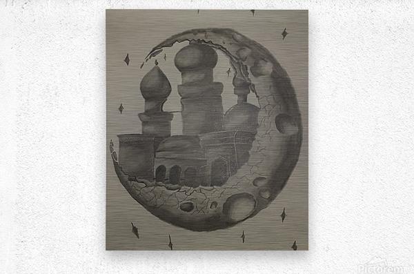 20210527 103804 1622139007.1945  Metal print